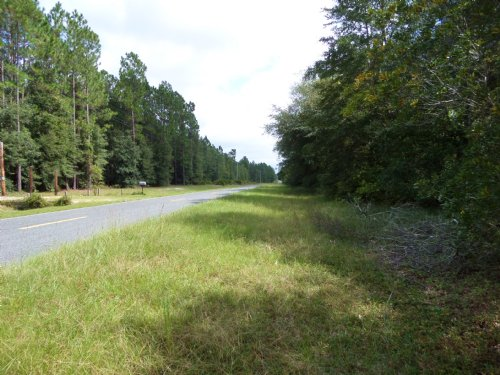 65 Acres Longford Rd : Jesup : Wayne County : Georgia