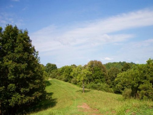 5.1acre Heritage Hollow, Terms $225 : Spencer : Roane County : West Virginia