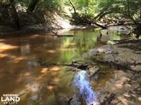 The Buckatunna Creek Quitman Tract : Quitman : Clarke County : Mississippi