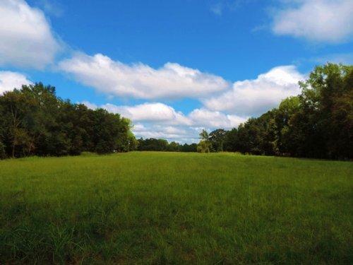 Hunting Cabin With Pasture : Monticello : Jasper County : Georgia