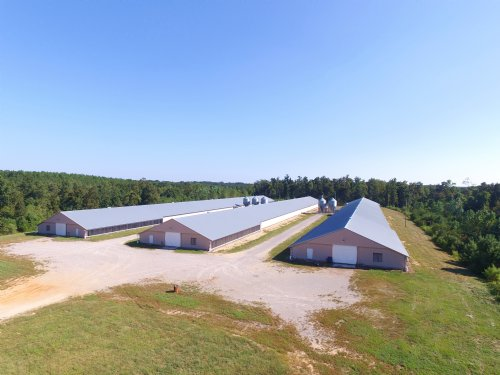 3 House Broiler Farm 93+/- Acres : Hodges : Marion County : Alabama