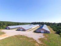 3 House Broiler Farm 93+/- Acres