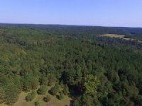 40 Wooded Acres With Lake