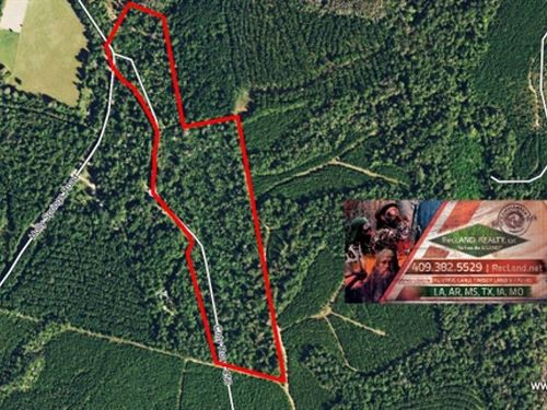 25.7 Ac Wooded Tract For Rural Hom : Jasper : Texas