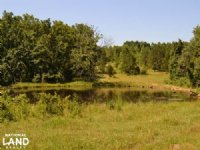 778+/- Acres Recreational Deer & Tu