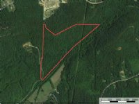 Bank Owned 58+/- Acres
