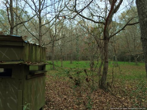 40± Ac Hunting / Recreational Land : Hazlehurst : Copiah County : Mississippi