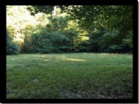 19.85 Acres Residential Land