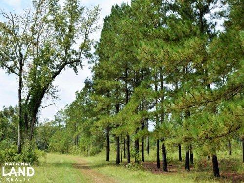 Deer Haven Farms : Manning : Clarendon County : South Carolina