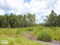 Homesite Or Mini Farm Tract