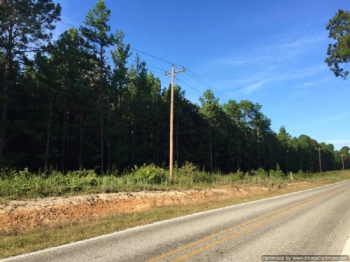 Hunting/Home Site/Timber Tract : Noxapater : Winston County : Mississippi