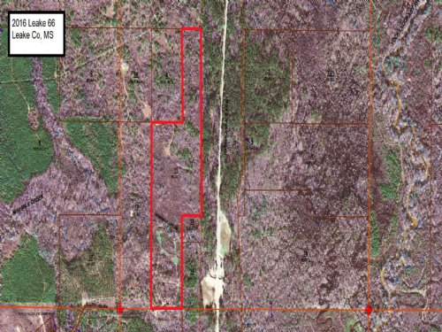 66± Acres : Carthage : Leake County : Mississippi