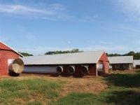 8 House Broiler Farm