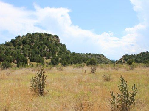 250 Acres Spectacular Views : Pueblo : Colorado