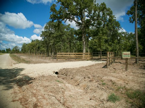 74.53 Ac Hopewell Rd : Bedias : Walker County : Texas