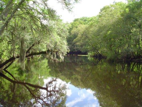 Riverfield Plantation : Walterboro : Colleton County : South Carolina