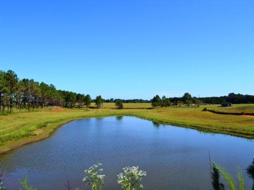Noble Tract : Shorter : Macon County : Alabama