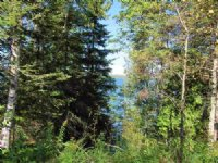 376 Ac Off Co Rd 553, Mls# 1097717
