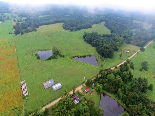 162.4 Acres, Lipton Rd : Syracuse : Morgan County : Missouri
