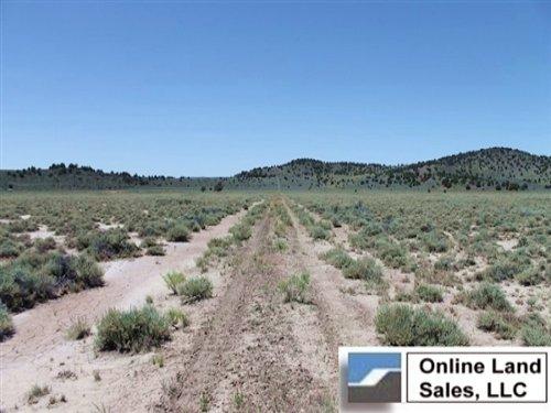 20.1 Acres Moon Valley Ranch : Termo : Lassen County : California