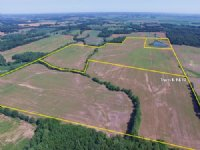 Land Auction: 705+/- Ac - 16 Tracts