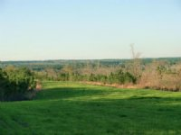 900 Acre High Fence : Lumberton : Lamar County : Mississippi