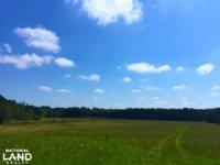 Elgin Hunting And Timber Estate