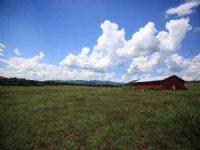 Summit View - 40± Acres