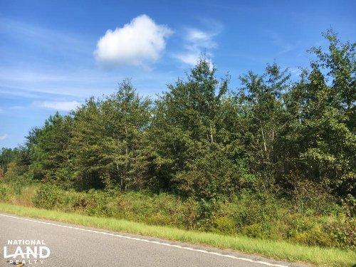 Worley Farm Lot 4 : Galivants Ferry : Horry County : South Carolina