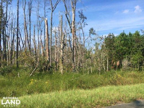 Worley Farm Lot 6 : Galivants Ferry : Horry County : South Carolina