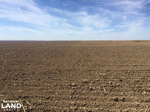 Western Kansas Cropland For Sale : Tribune : Greeley County : Kansas