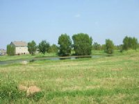 Sells Without Reserve 41+/- Ac