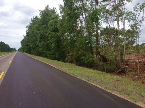 10 Acres On Hwy 301 S : Jesup : Wayne County : Georgia