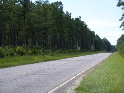 Johnson Road : Georgetown : South Carolina