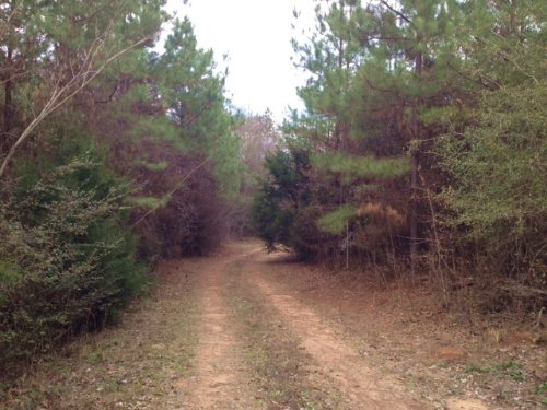 County Road 62 Pine Level : Prattville : Autauga County : Alabama