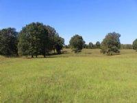 Bell Meadows 40