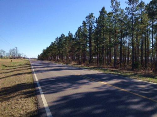 Verbena Property : Verbena : Chilton County : Alabama