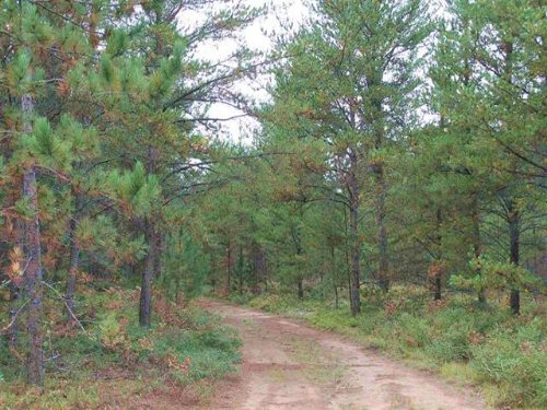39 Acres Co Rd 581, Mls# 1097362 : Ishpeming : Marquette County : Michigan