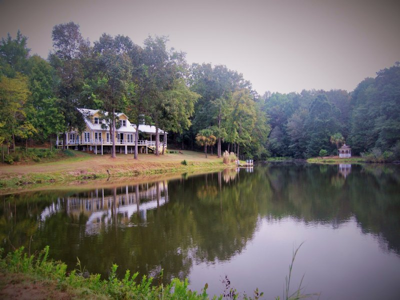 Magnolia Springs : Weston : Stewart County : Georgia