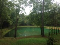 10 Acres And Pond