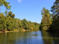 16.6 Acres With Pond In District 5