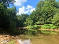 Little River Bottomland