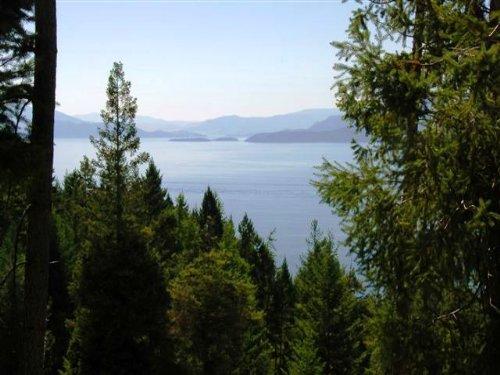 Watching Flathead Lake : Bigfork : Lake County : Montana