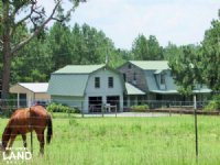 Lumpkin Horse Lover's Dream
