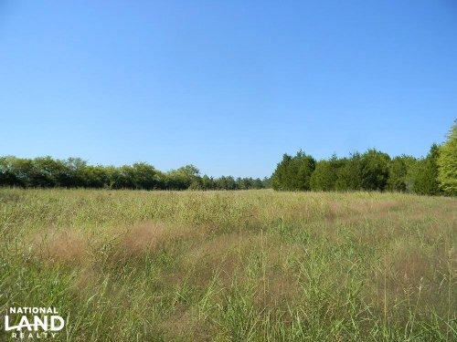 Tayloe Creek Tract : Uniontown : Perry County : Alabama
