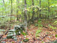 77 Acres Wawarsing Near State Park