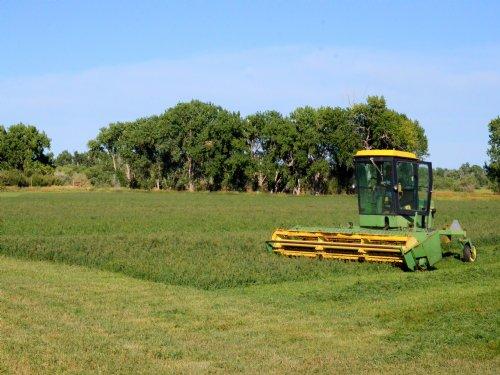 Arkansas River Farm And Orchard : Boone : Pueblo County : Colorado