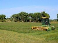 Arkansas River Farm And Orchard