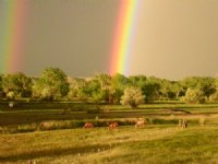 Arkansas River Farm And Orchard : Fowler : Pueblo County : Colorado