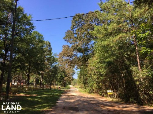 Wilmer Southern Pines Whitetail Lan : Wilmer : Mobile County : Alabama